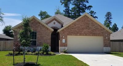 Conroe Single Family Home For Sale: 14033 Wolftrap Lane