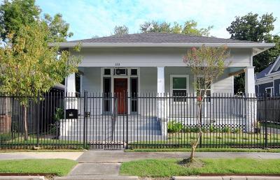 Houston Single Family Home For Sale: 133 Parkview Street