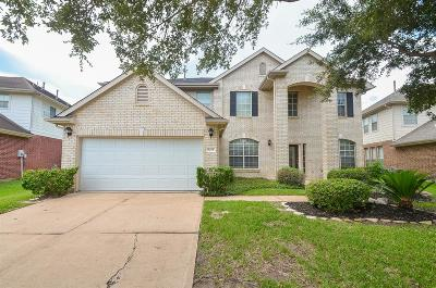 Sugar Land Single Family Home For Sale: 5419 River Gable Court