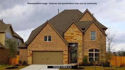 Manvel Single Family Home For Sale: 2707 Newport Lake Boulevard