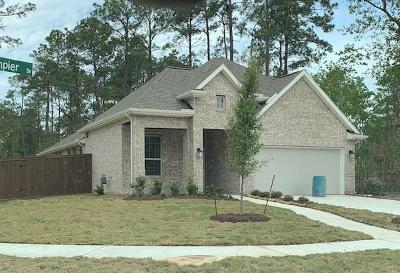 Houston Single Family Home For Sale: 16811 Dampier Drive