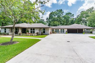 Houston Single Family Home For Sale: 910 Southern Hills Road