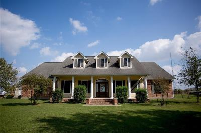 Katy Single Family Home For Sale: 2424 Katy Hockley Cut Off Road