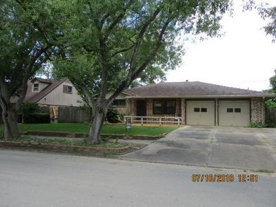 Bay City Single Family Home For Sale: 3708 Willowick Drive