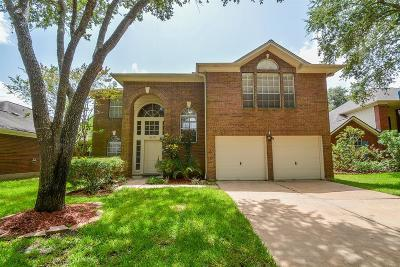 Sugar Land Single Family Home For Sale: 4110 Rocky Bend Drive