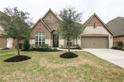 Rosenberg Single Family Home For Sale: 6302 Milam Branch Lane