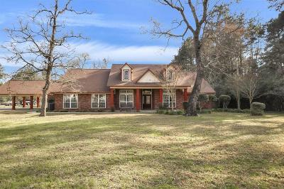 Magnolia Single Family Home For Sale: 30601 S Holly Oaks Circle