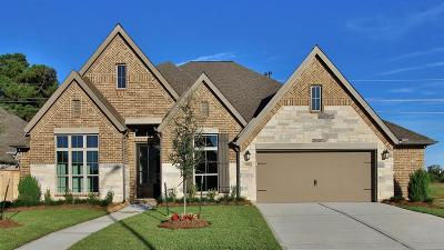 Tomball Single Family Home For Sale: 21426 Rose Loch Lane
