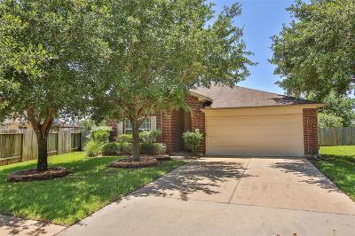 Cypress Single Family Home For Sale: 17407 Cypress Orchard Lane