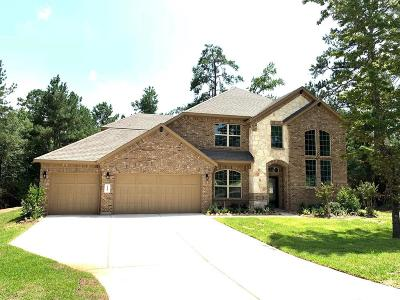 Conroe Single Family Home For Sale: 11009 Shadow View Drive