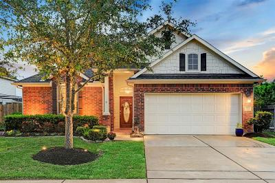 Houston Single Family Home For Sale: 2108 Mooncrest Drive