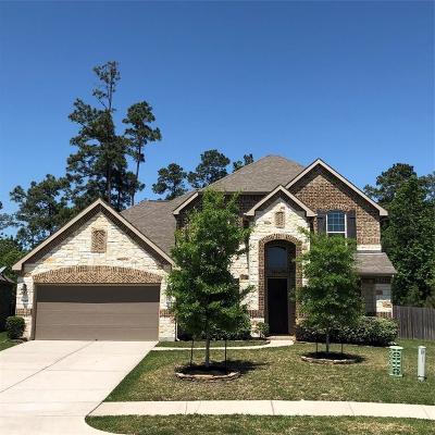 Houston Single Family Home For Sale: 13419 Lake Arlington Road