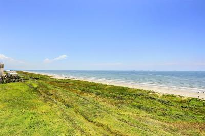 Galveston Mid/High-Rise For Sale: 801 E Beach Drive #BC0704