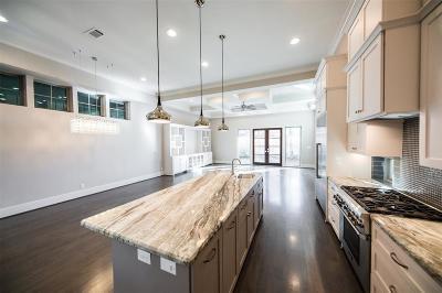 Houston Single Family Home For Sale: 2519 McClendon Street