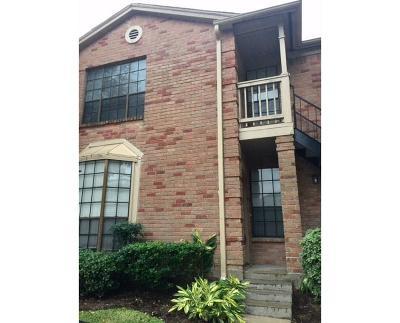 Houston Single Family Home For Sale: 2255 Braeswood Park #153