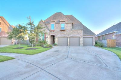 Manvel Single Family Home For Sale: 3954 Lupin Bush Lane