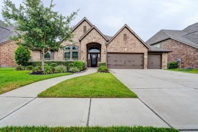 Shadow Creek Ranch Single Family Home For Sale: 2410 Barton Shore Drive