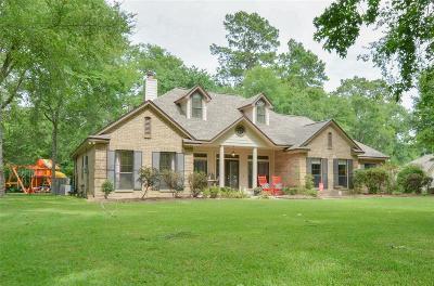Magnolia Single Family Home For Sale: 31218 Johlke Road