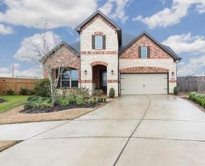 Fulshear Single Family Home For Sale: 28130 Laurel Garden Lane