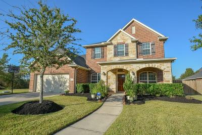 Katy Single Family Home For Sale: 2938 Dunlin Terrace Drive