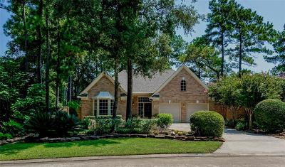 Single Family Home For Sale: 54 N Copperknoll Circle