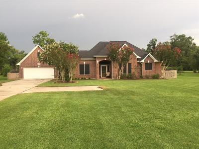 Baytown Single Family Home For Sale: 3002 E Cedar Bayou Lynchburg Road