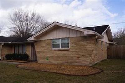 Houston Single Family Home For Sale: 9307 Braes Bayou Street