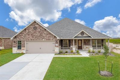 Texas City Single Family Home For Sale: 920 White Willow Drive