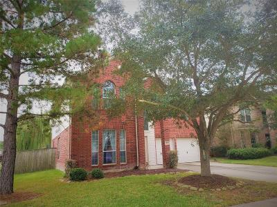 Katy Single Family Home For Sale: 2803 Noble Grove Lane