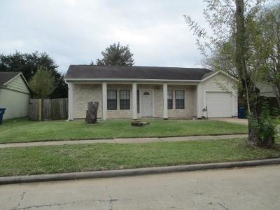 Hockley Single Family Home For Sale: 24415 Running Iron Drive