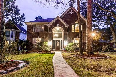 Houston Single Family Home For Sale: 16039 Lausanne Drive