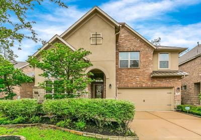 The Woodlands Single Family Home For Sale: 19 Whispering Thicket Place