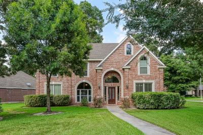Tomball Single Family Home For Sale: 31402 Spica Street