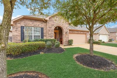 Tomball Single Family Home For Sale: 9103 Blanefield Lane