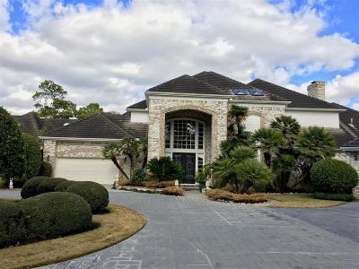 Houston Single Family Home For Sale: 2746 N Southern Oaks Drive