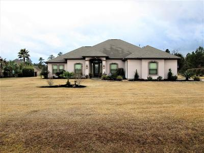 Montgomery Single Family Home For Sale: 18786 Serene Water Drive
