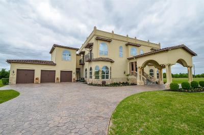 Richmond Single Family Home For Sale: 8810 Corbridge Drive