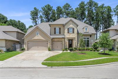 Tomball Single Family Home For Sale: 13406 Alpine Mountain Lane