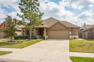 Conroe Single Family Home For Sale: 118 Chestnut Meadow Drive