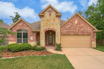 Conroe Single Family Home For Sale: 1101 Jacobs Lake Boulevard