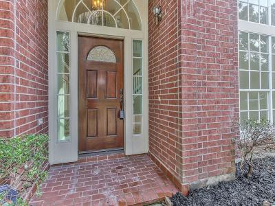 Houston Single Family Home For Sale: 9515 Shadow Gate Lane