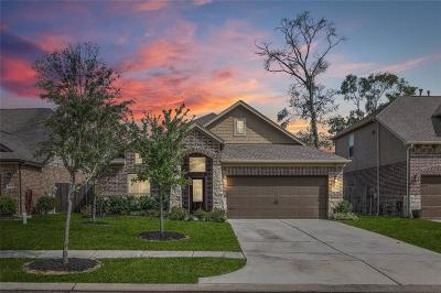 New Caney Single Family Home For Sale: 23419 Banks Mill Drive