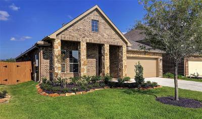 League City Single Family Home For Sale: 1633 Canchola Lane