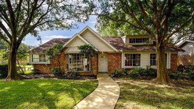 Houston Single Family Home For Sale: 4703 Blueberry Hill Drive
