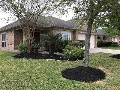 League City Single Family Home For Sale: 3131 Clearsky Court