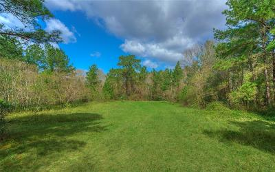 Conroe Farm & Ranch For Sale: 0002 Sapp Road