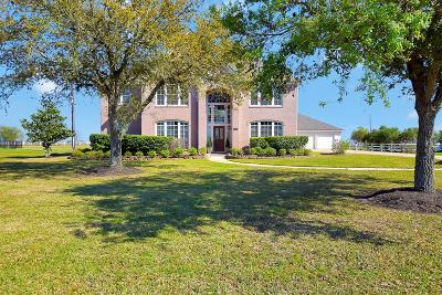 Fort Bend County Single Family Home For Sale: 1411 Mulberry Farm Lane