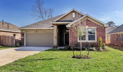 Montgomery County Single Family Home For Sale: 30115 Saw Oaks Drive
