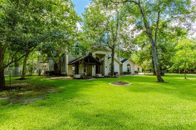 Fort Bend County Single Family Home For Sale: 2199 Darby Lane