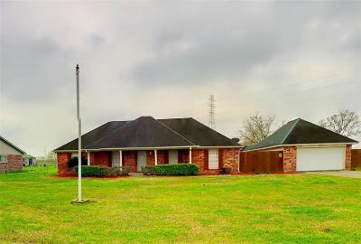 Alvin Single Family Home For Sale: 543 County Road 296